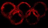 sochi, Sochi olympics, olympics, sochi2014